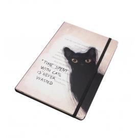 كتيب ملاحظات - وقت القطط